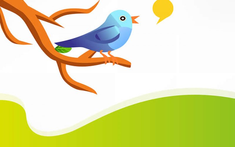 5 Small Business Twitter Tips