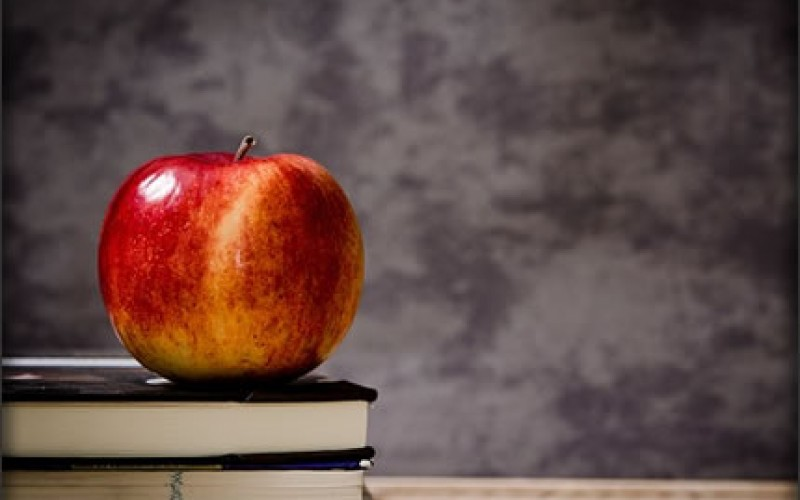 5 Different Education Jobs You Should Consider