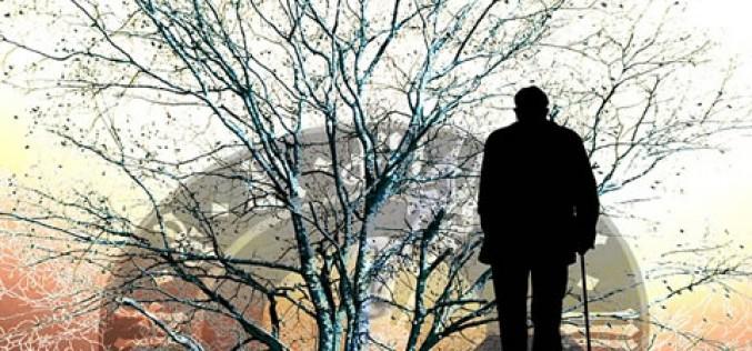 Roth IRA: Retirement Planning Essentials
