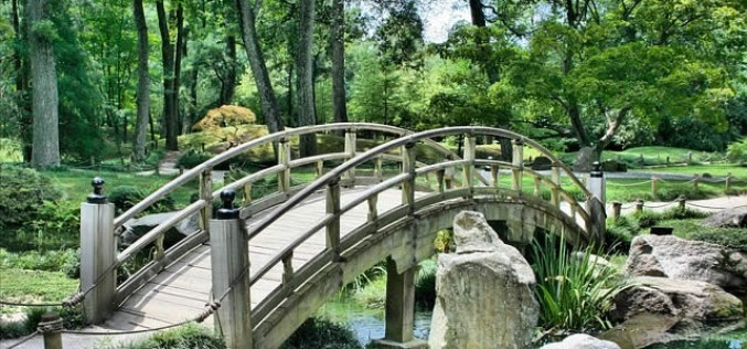 Building a Strong Career as an Outdoor Landscape Designer