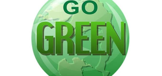 6 Ways Businesses can go Green to Save Money
