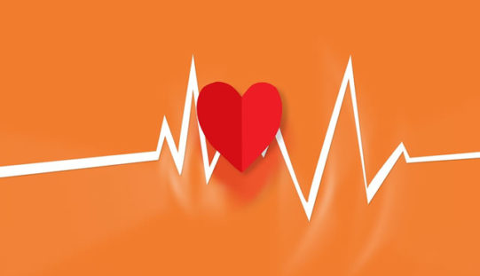 Do You Have What it Takes to be a Good Cardiologist?