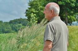 How You Can Help A Senior Veteran Find A Better Quality Of Life