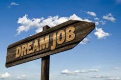 Dream Jobs to Escape the Office 9-5