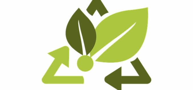 Simple Ways to Make Your Workplace Eco-Friendly