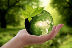 3 Ways to Save Money by Caring for the Environment