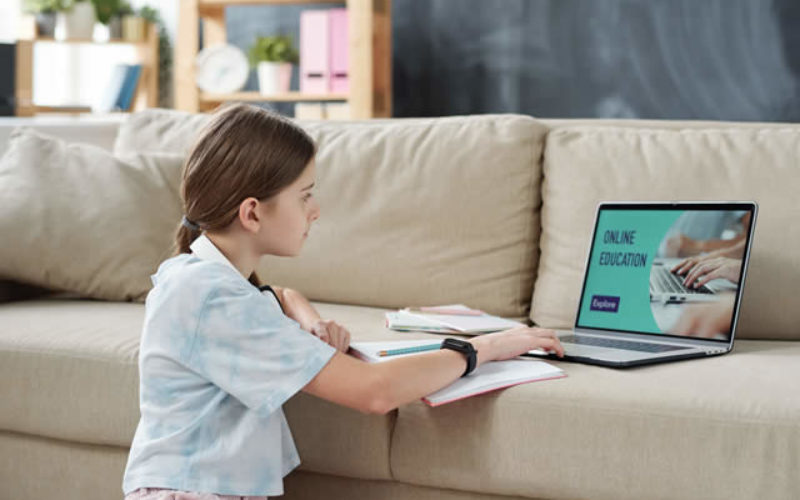 How Educators Prepare to Teach Online