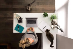 Things You Need to Start Working From Home