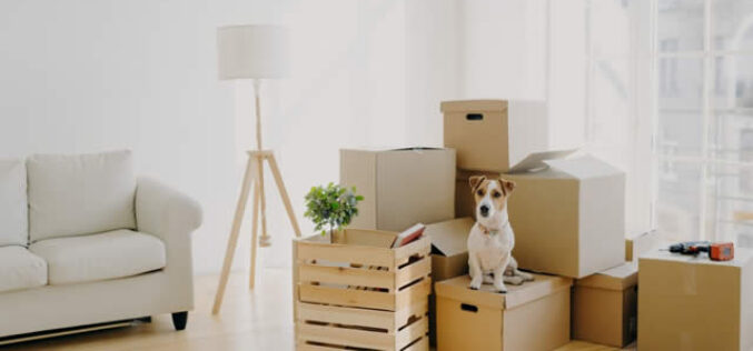 4 Ways You Can Prepare Financially Before a Move