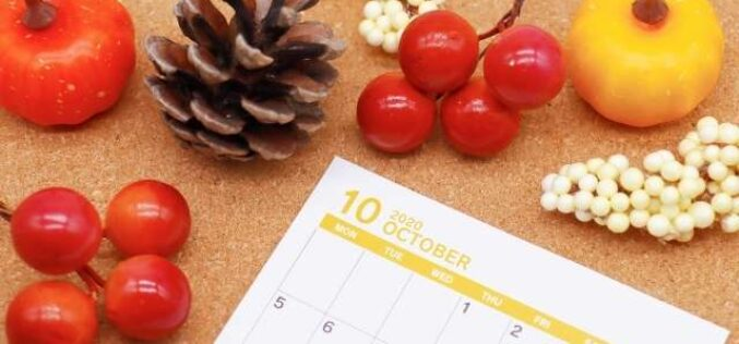 Everything You Need To Know To Organize a Fall Festival